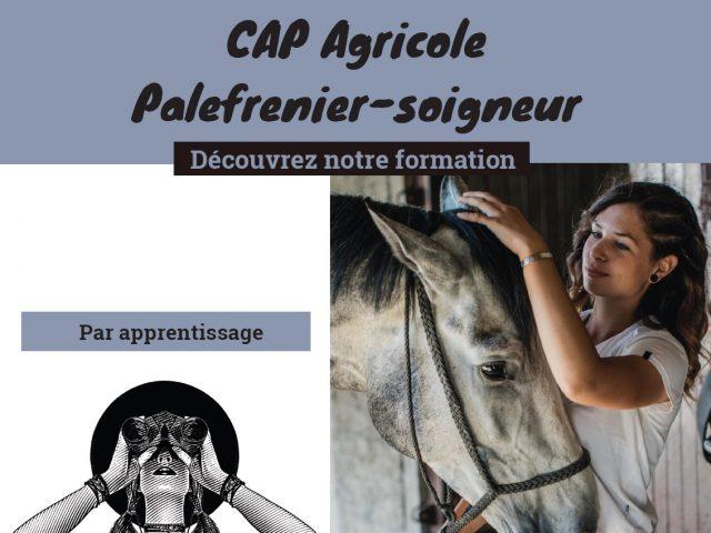 https://www.formationcheval.fr/wp-content/uploads/2020/12/Nouveau-CAP-640x480.jpg