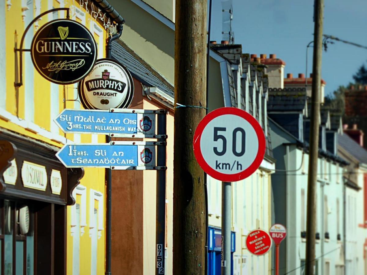 Paysage Irlande 5